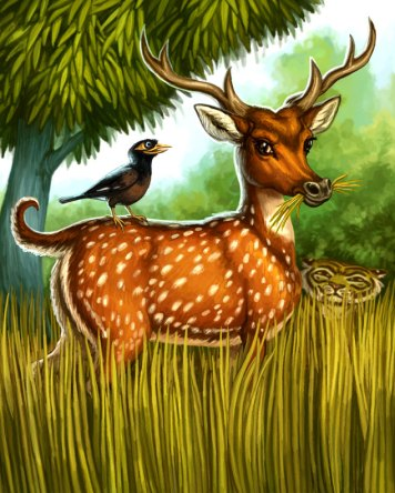 Chital for Tiger Stripes ©Game Salute, Digital