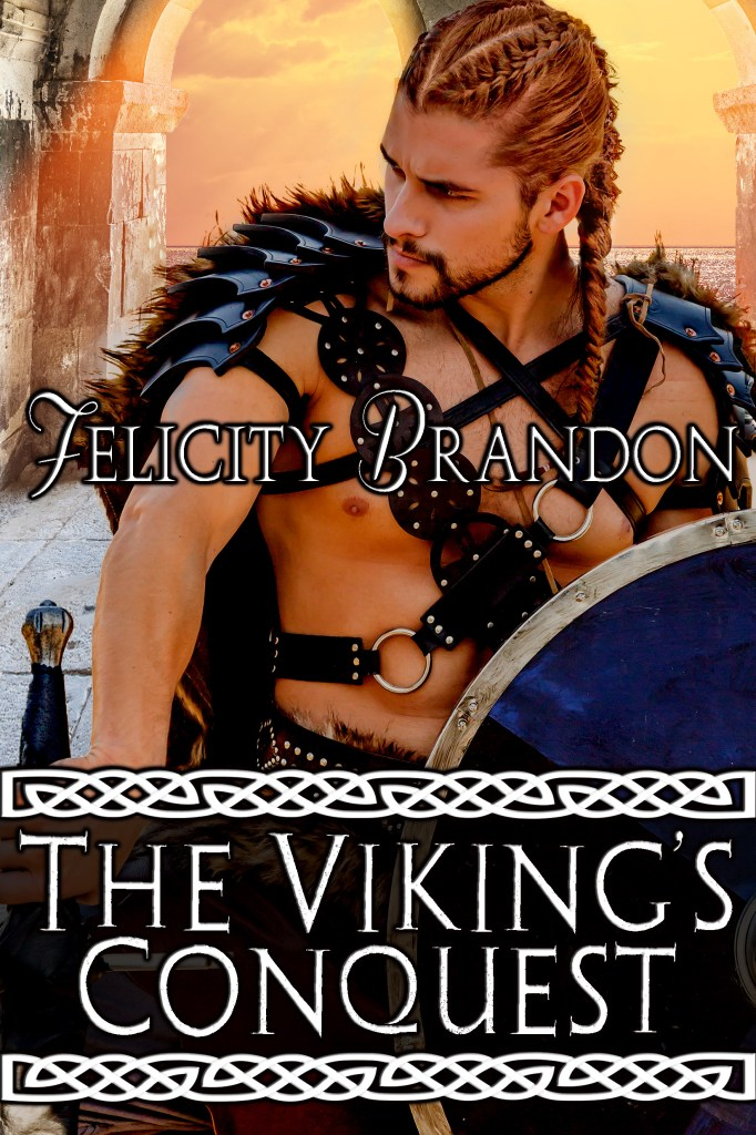 Book Cover: The Viking's Conquest