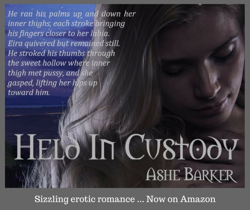 Ashe Barker Sizzling erotic romance ... Now On Amazon