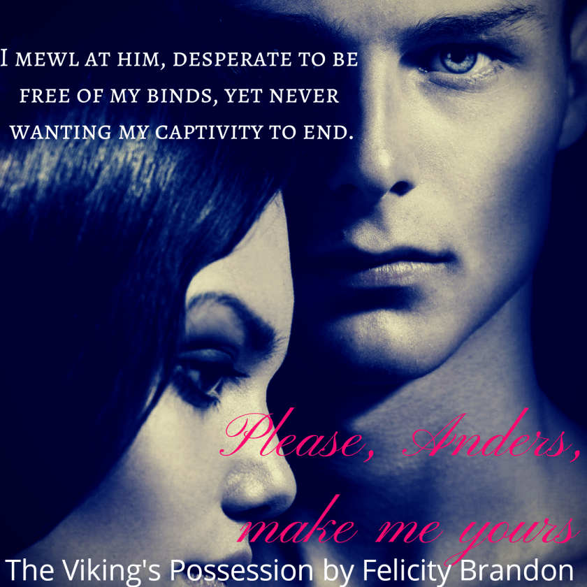 The Viking's Possession teaser 2.jpg