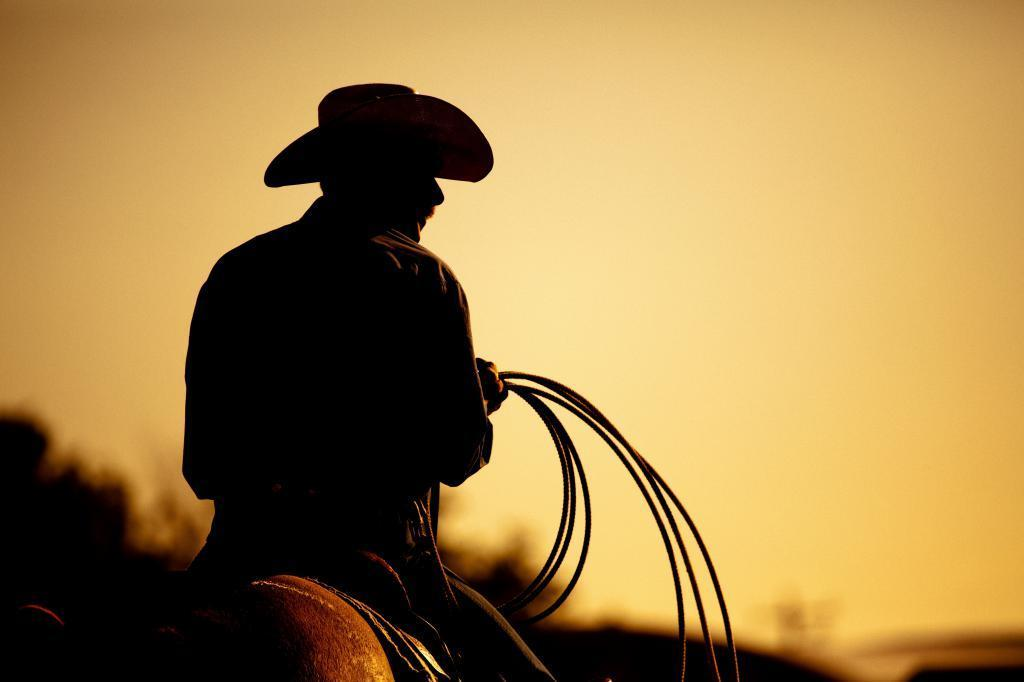 Cowboy rides into the sunset with a whip in hand