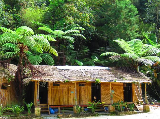 De Native Guesthouse Tanah Rata (1)