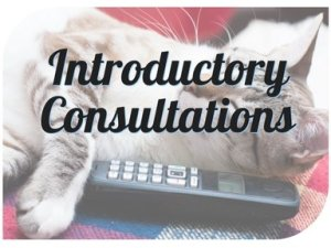 Introductory Consultations