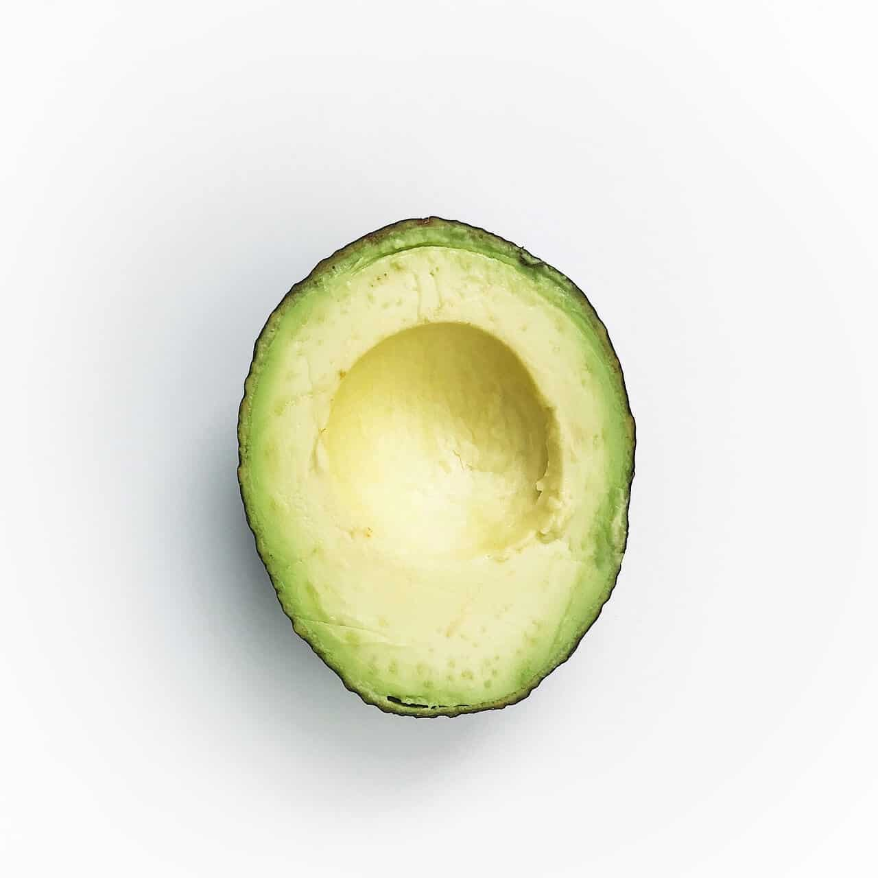 Can Cats Eat Avocado? Benefits And Precautions Revealed! 1