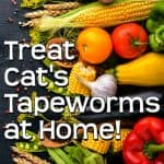 Home Remedies for Tapeworm in Cats - A More Natural Approach