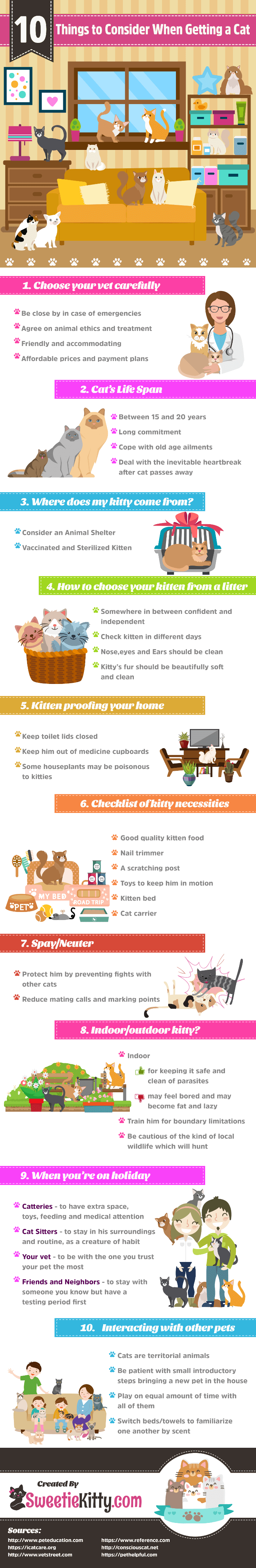 Infographic of 10 things to consider when getting a cat