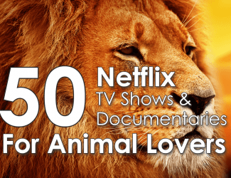 50 Netflix Shows & Documentaries for Animal Lovers