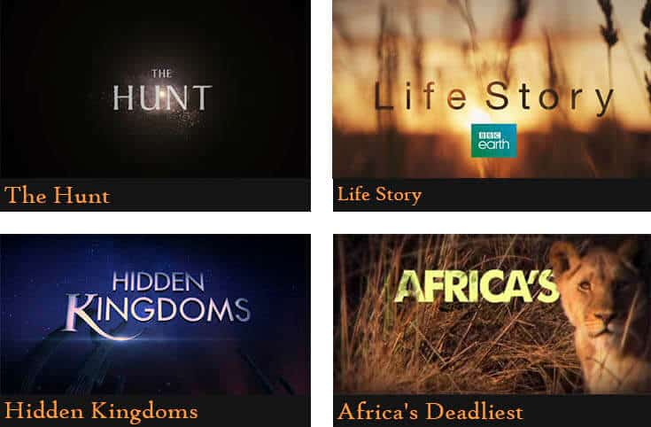 a poster divided into four pictures showing the names of the animal documentaries (The hunt, Life story, Hidden kingdoms, Africa's deadliest)
