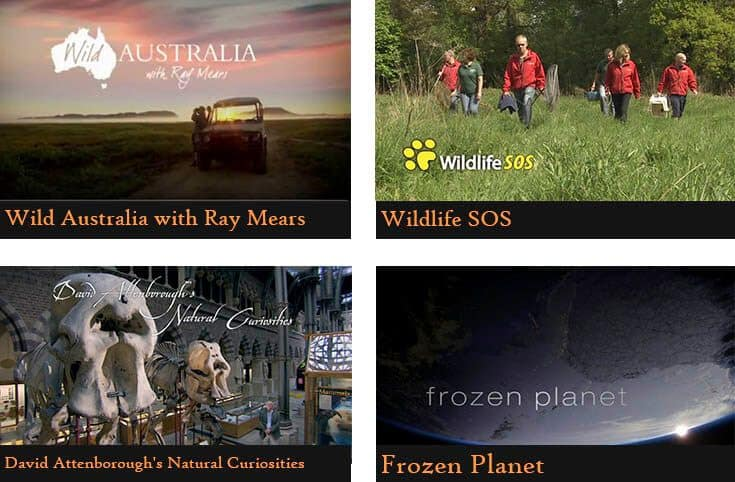 a poster divided into four pictures showing the names of the animal documentaries (Wild Australia with Ray Mears, Wildlife SOS, David Attenborough's natural curiosities), Frozen planet)