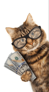image of a feline with money in paw