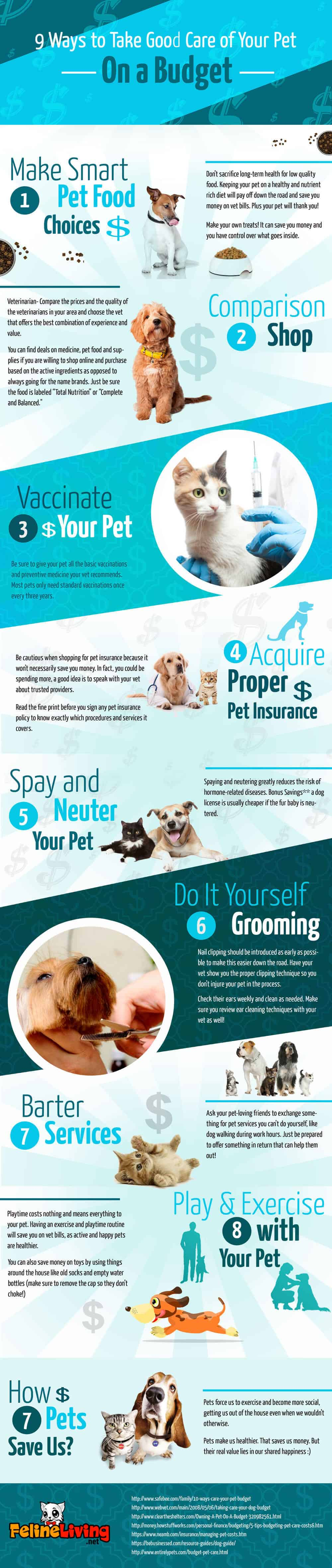 infographic listing ways to budget pet care