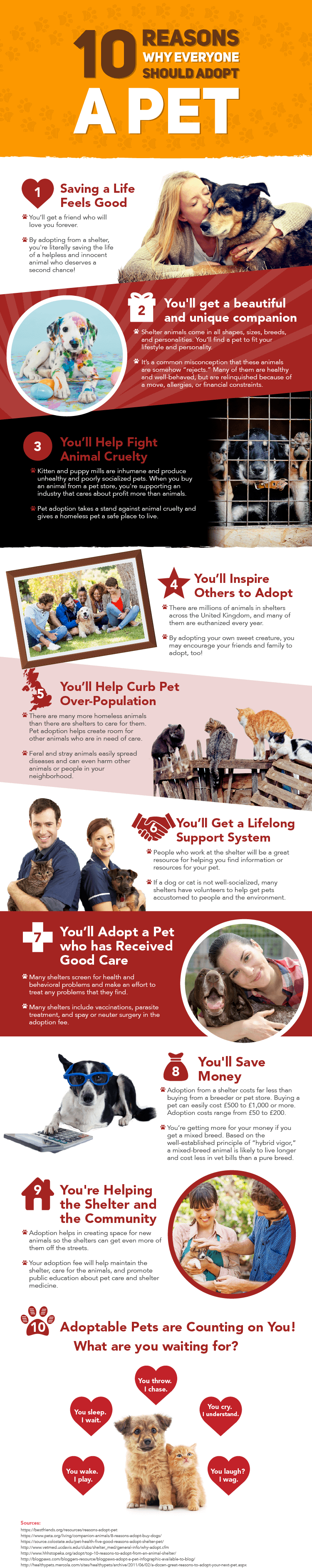 Infographic of ten reasons why everyone should adopt a pet