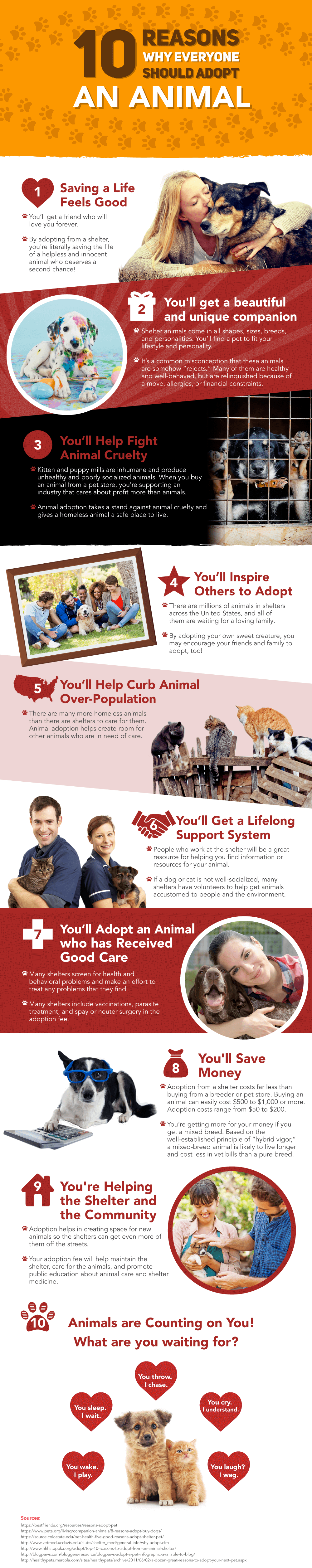 image of a infographic listing reasons to adopt an animal