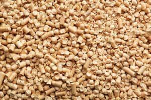 image of feline wood chips