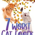 7 Worst Cat Foods 2021 - How to Choose a Quality Food