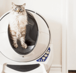 Top 7 Best Automatic Litter Box For Self Cleaning [2020 Update]