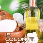 Coconut Oil For Cats - Uses, Benefits And Risks