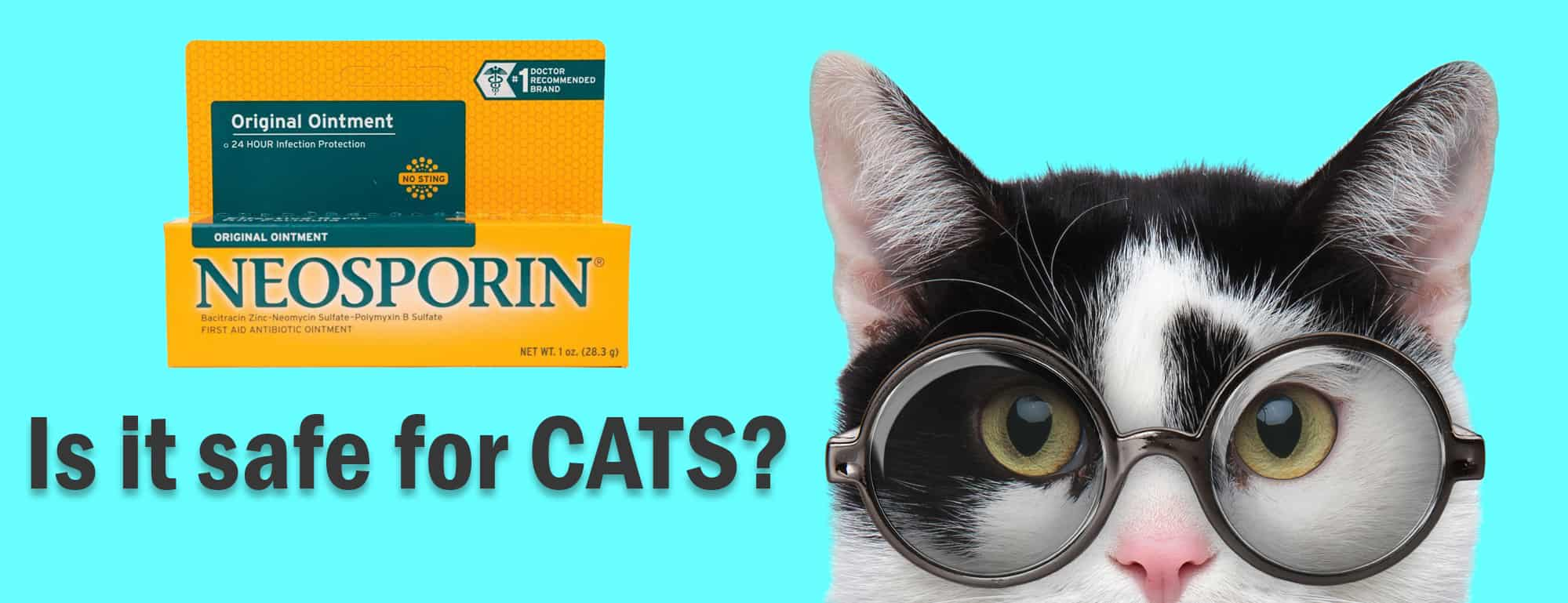 Neosporin - Is It Safe for Cats
