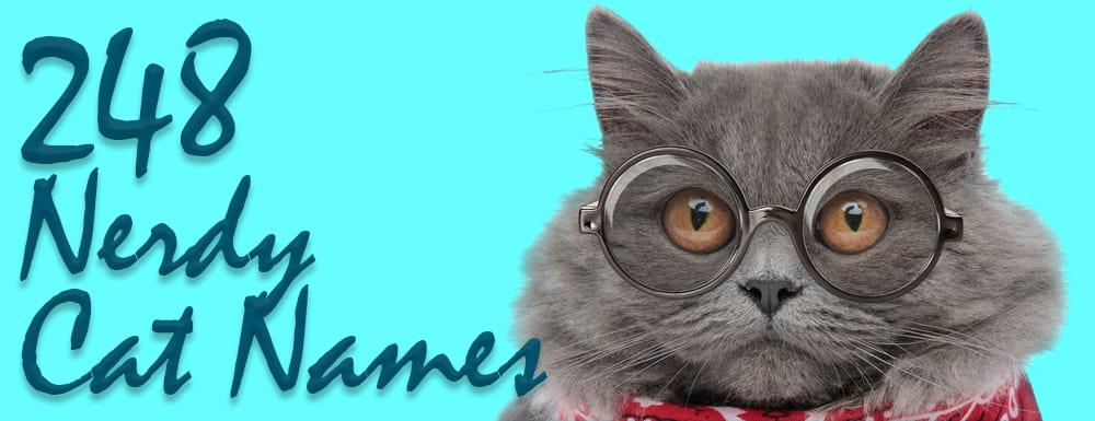 248 Nerdy Cat Names