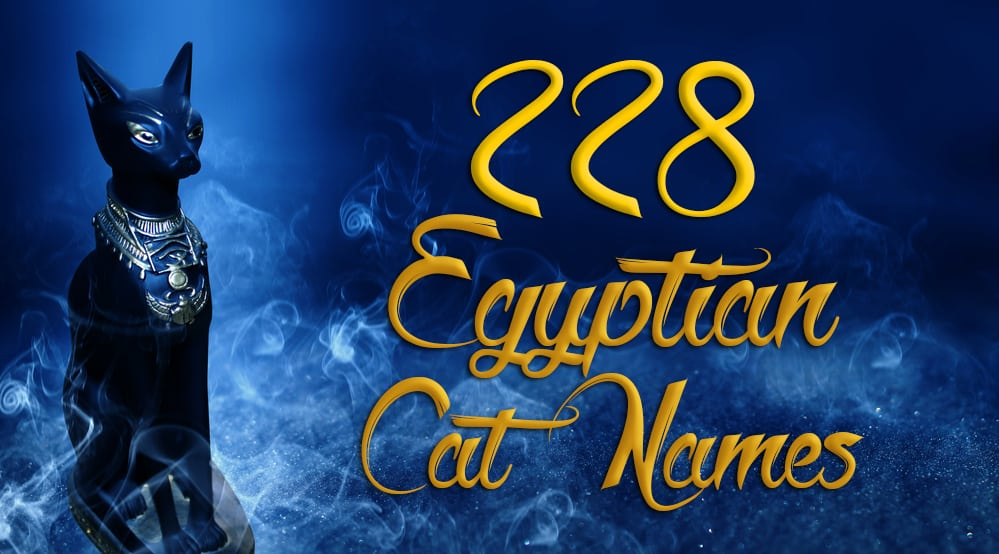 228 Egyptian Cat Names