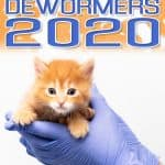 Top 5 Best Cat Dewormers [2020 Buyer's Guide]