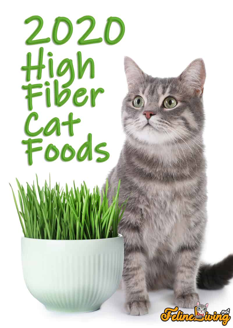 how to add fiber to cats diet