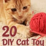 How to Make Homemade DIY Cat Toys - Ideas And Guides 2021