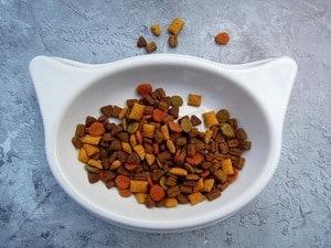 image of a bowl of dry feline food
