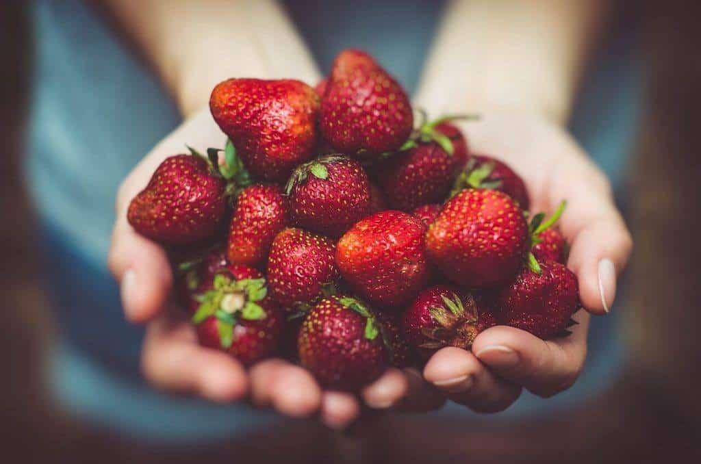 image of Fragaria berries