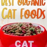 Best Organic Cat Food [year]: Buyer's Guide & Reviews