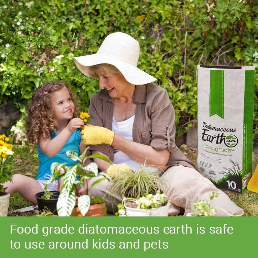 Is Diatomaceous Earth Safe For Cats
