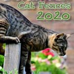 The 6 Best Invisible Fence For Cats [2020 Reviews & Buyer's Guide]