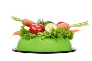 a feeding bowl full of salad and vegetables before white background