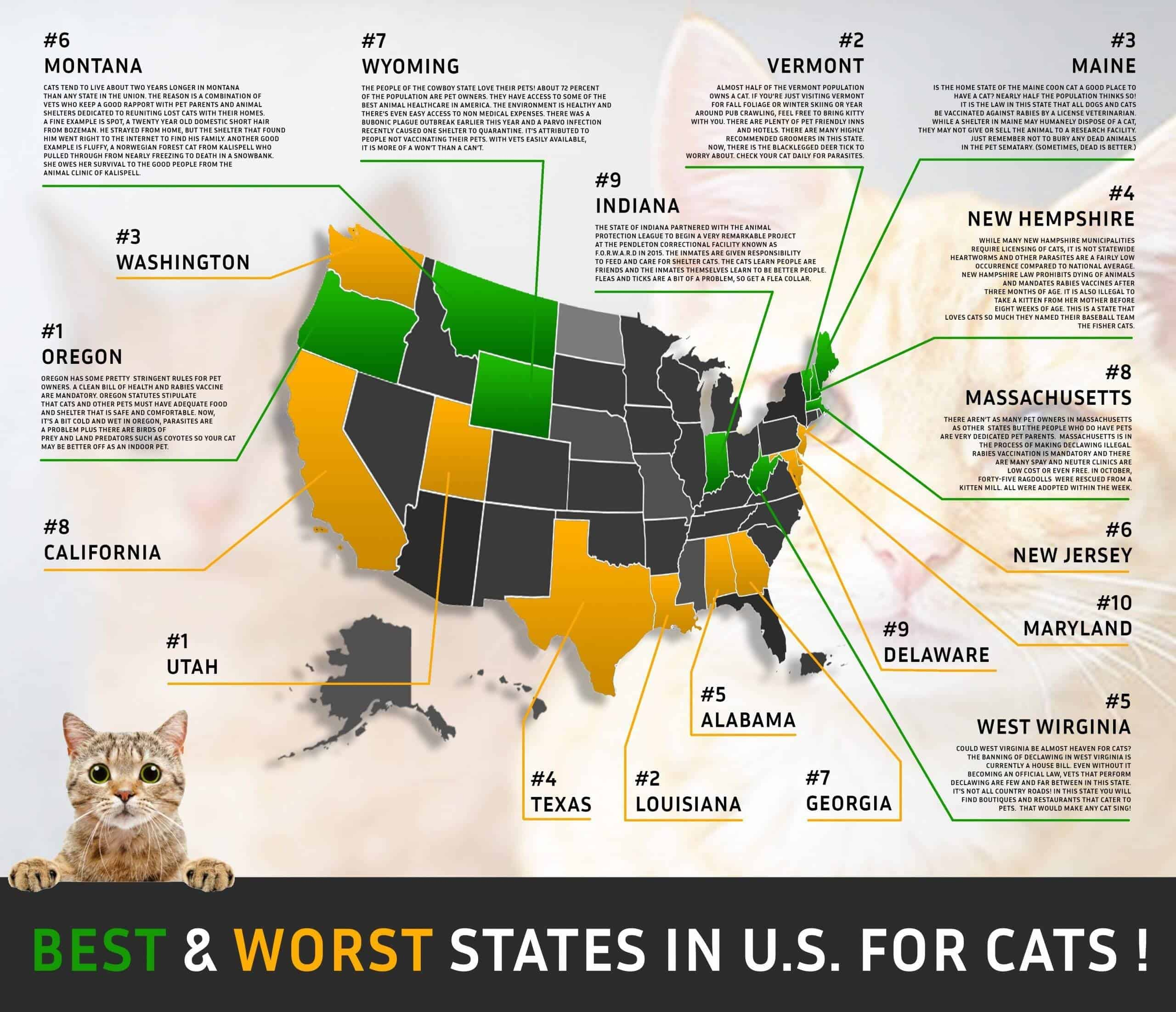 image of a graphic presenting the best and worst states for the cat parents