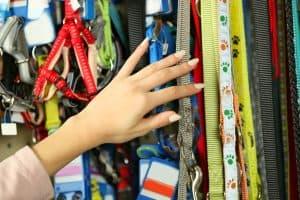 choosing cat harness