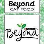 Purina Beyond Cat Food Review 2020 - Is It The Right Choice?