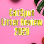 CatSpot Litter Review: A Natural Cat Litter Guide for 2020