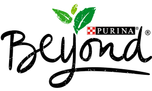 Purina Beyond Cat Food Review 2021 - Is It The Right Choice? 1