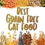 Best Grain Free Cat Food: [year] Reviews and Complete Buyer's Guide