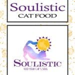 Soulistic Cat Food Review 2020: The Top Choice For Picky Kitties!