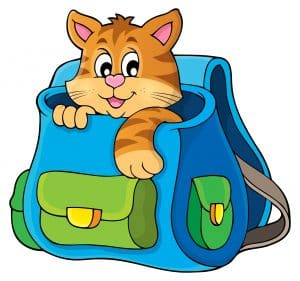 cat in backpack