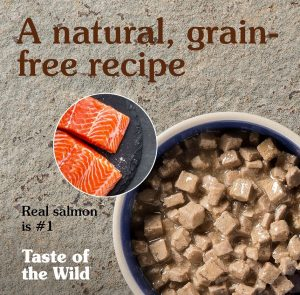 Taste of the Wild Cat Food Review 2020: What You Need To Know 17