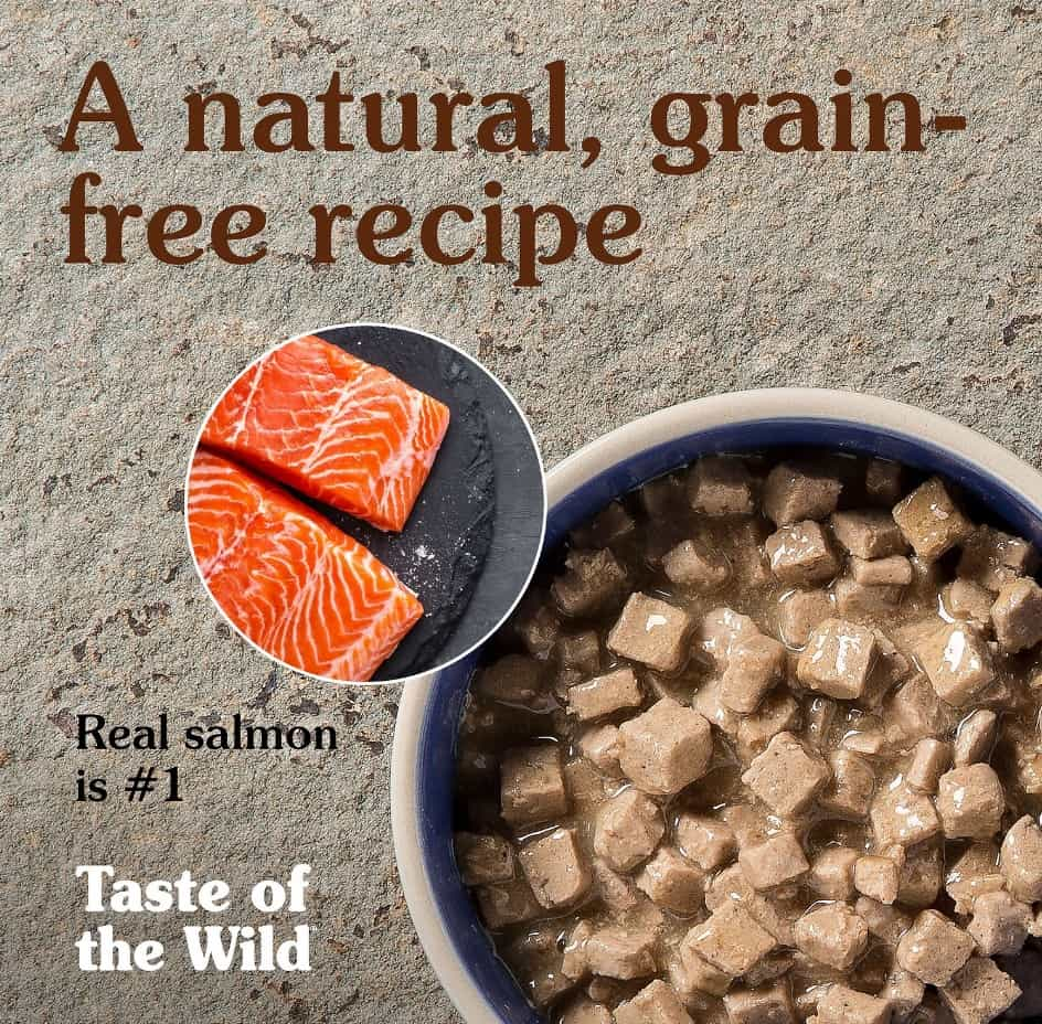 Taste of the Wild Cat Food Reviews 2021: What You Need To Know 16