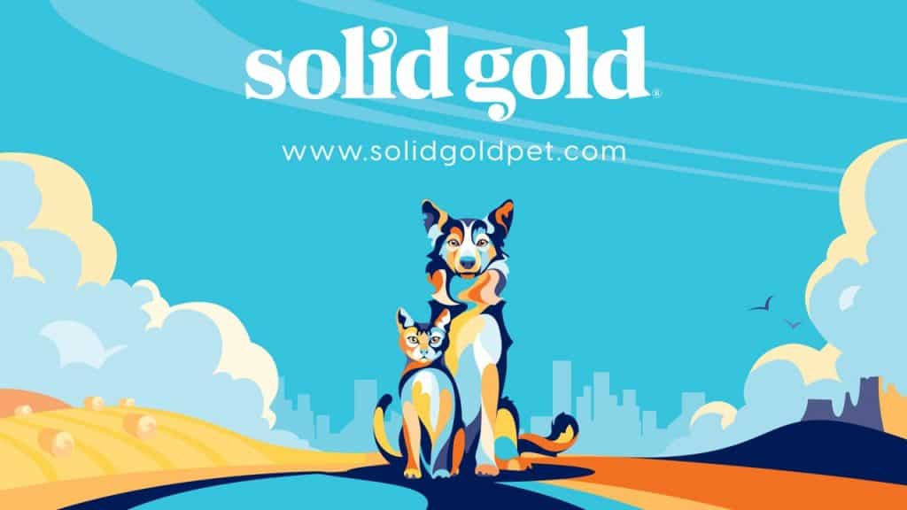 Solid Gold Cat Food Review 2021: A Holistic Approach to Feline Health 1