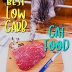 Ultimate Buyer's Guide + Reviews of the Best Low Carb Cat Food [year]