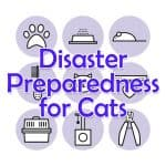 10 Steps To Pet Disaster Preparedness For Every Pawrent!