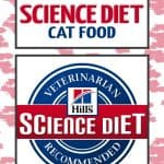 2020 Science Diet Cat Food Review: Vet-Approved Nutrition For Your Cat