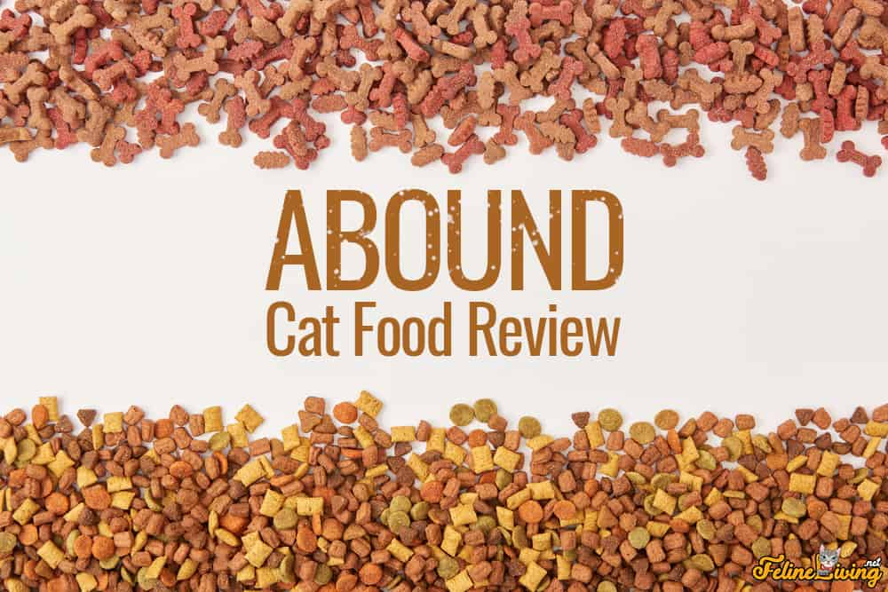 Abound Cat Food Review