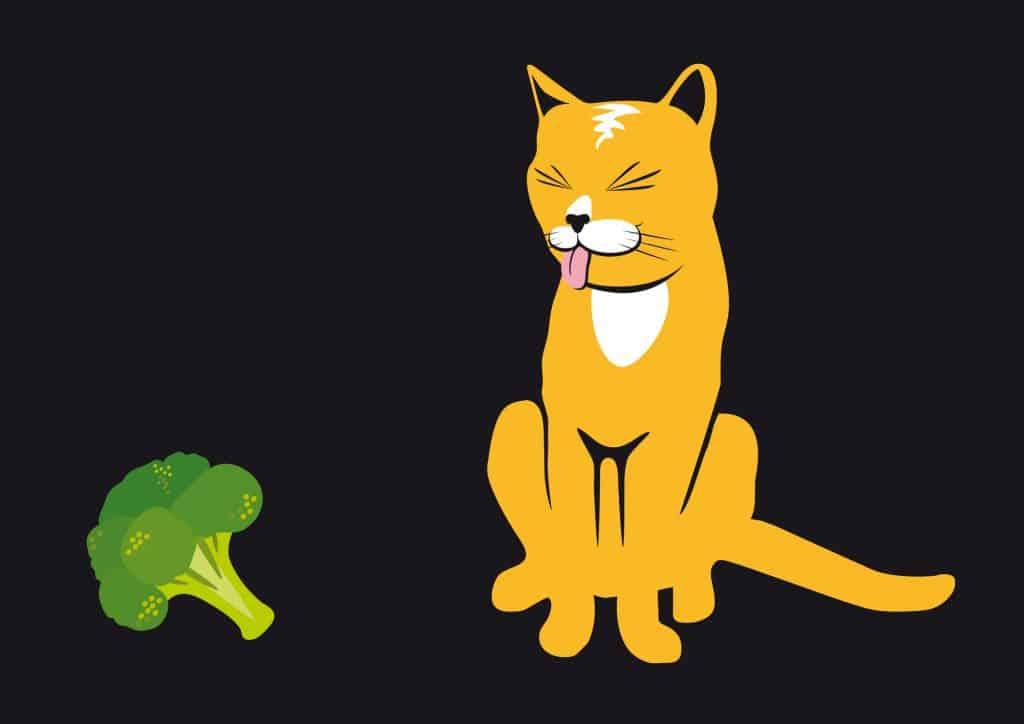 cat and broccoli