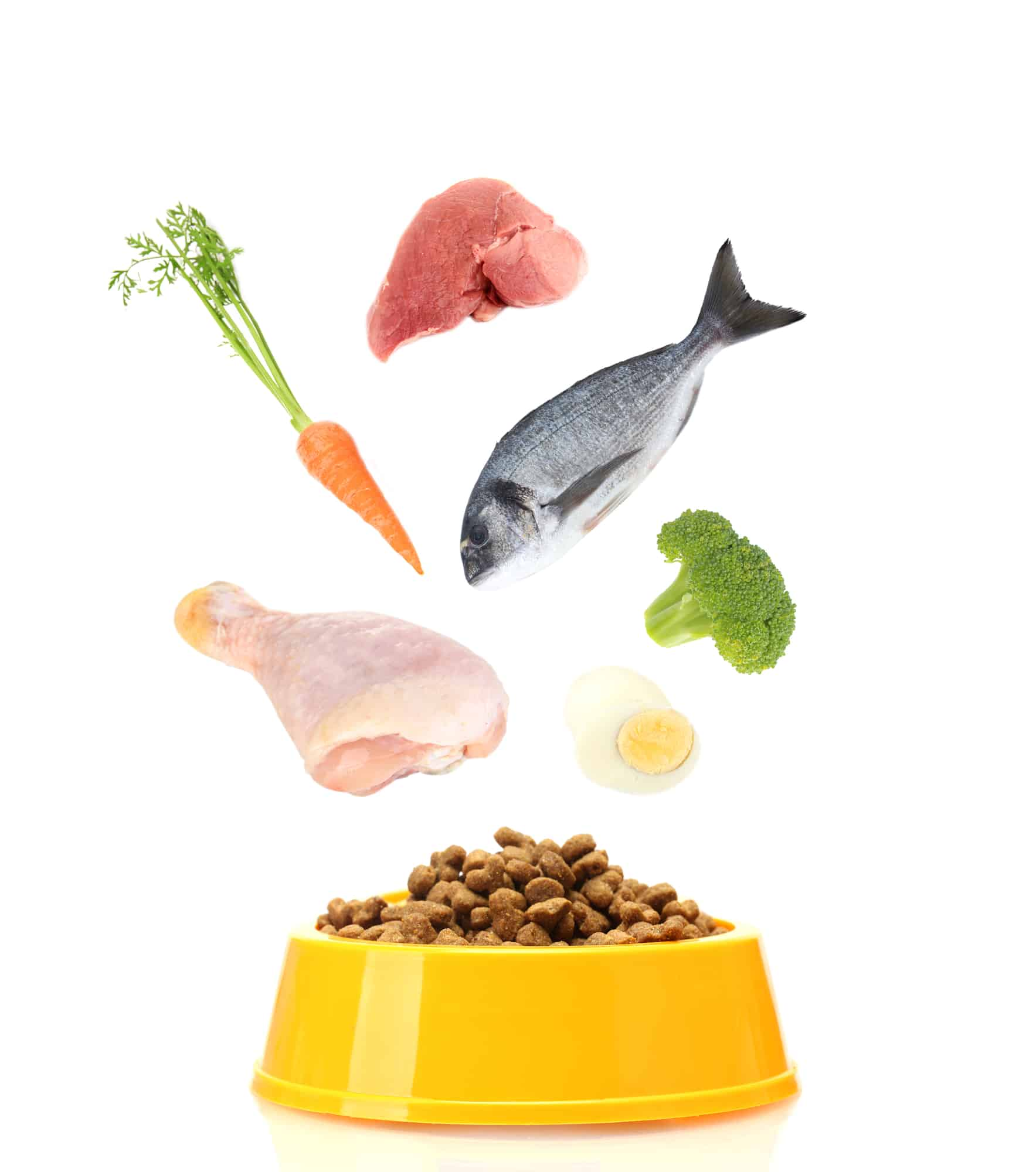 Nulo Cat Food Reviews 2021: Their Best Products Revealed 19